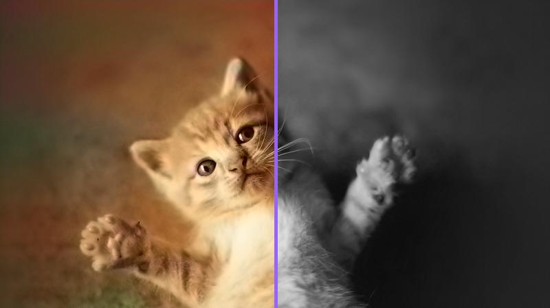 rendered-comparison(1)